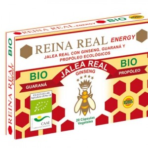 Reina Real Energy