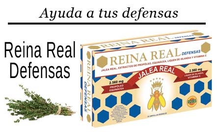 complemento alimenticio de jalea real echinacea