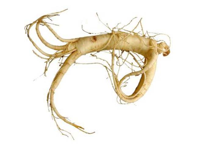 Robis, food supplement with ginseng