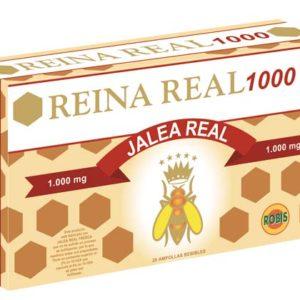 Reina Real 1000