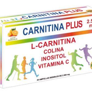 Carnitine Plus