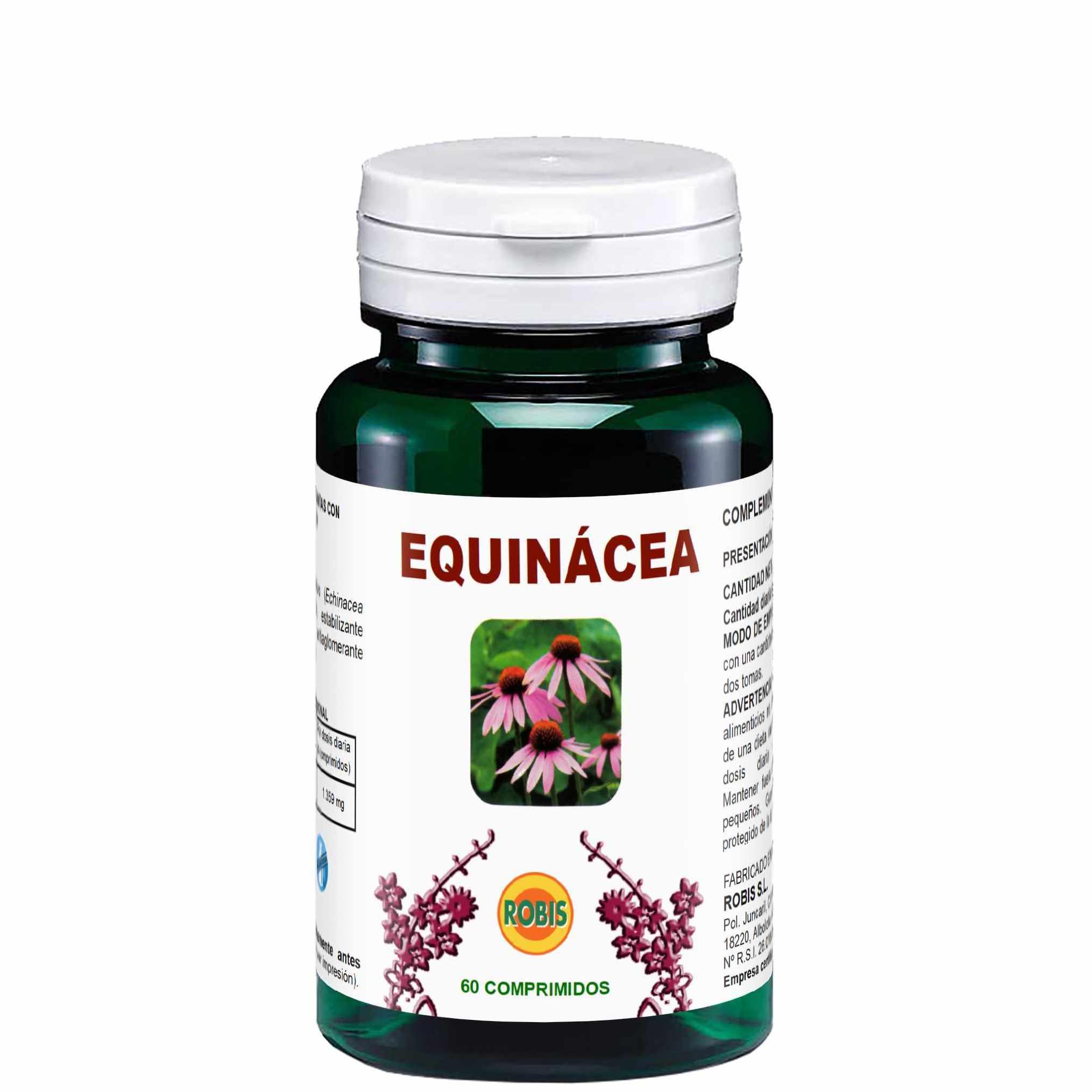 Echinacea Robis