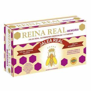 REINA REAL MEMORY