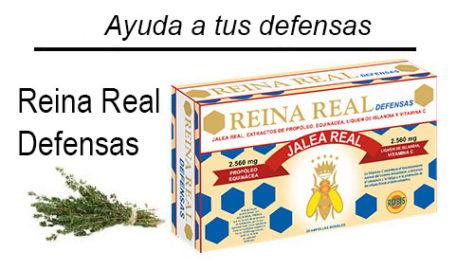 RR Defensas Inicio ES