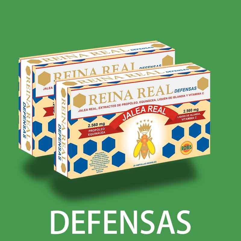 REINA REAL DEFENSAS 2020 web